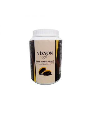 Vizyon Chocolate Pralin- Bake Stable 2.5kg